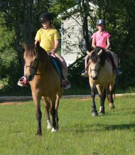 Easter pony rides