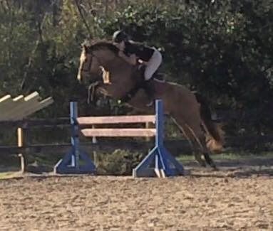 Dream Jumping3