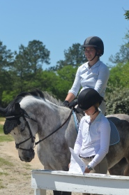 Horse Shows In The Oaks