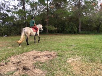Penny's first ride undersaddle.