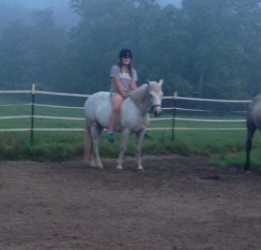 Ace's dam, Wildwych Trollop on a misty summer morning